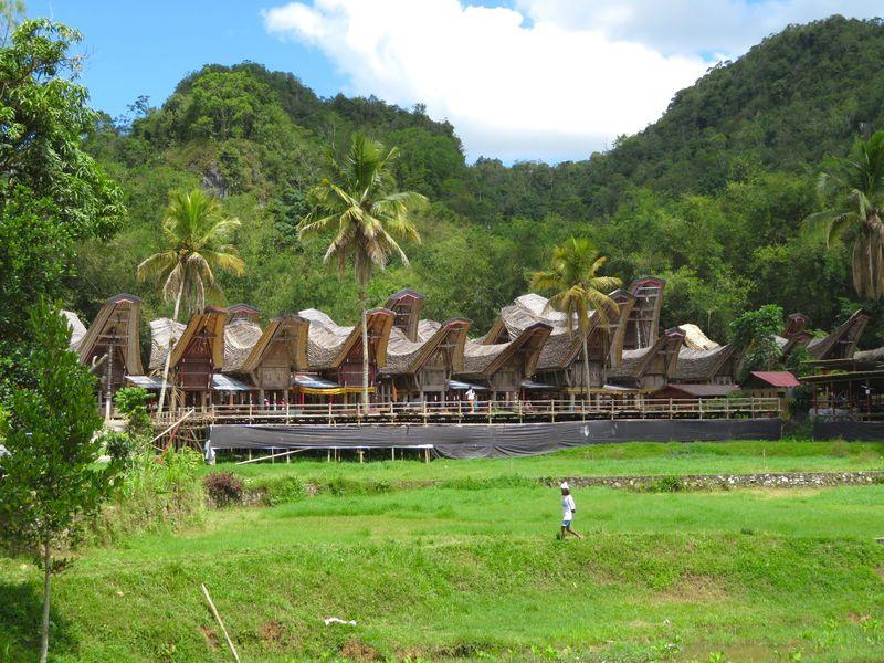 今も伝統文化を残すインドネシアの桃源郷「タナ・トラジャ」