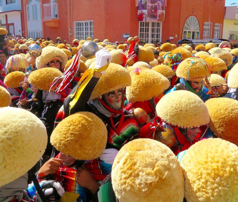 丸いタワシ頭が町を埋め尽くす!メキシコの奇祭「パラチコ」