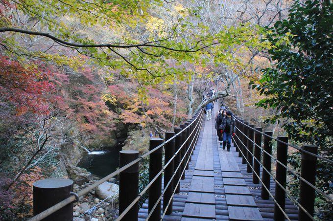 花貫渓谷の中心地、汐見滝吊り橋
