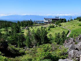 北八ヶ岳ロープウェイに乗ってお手軽高原散策「坪庭ウォーキング」