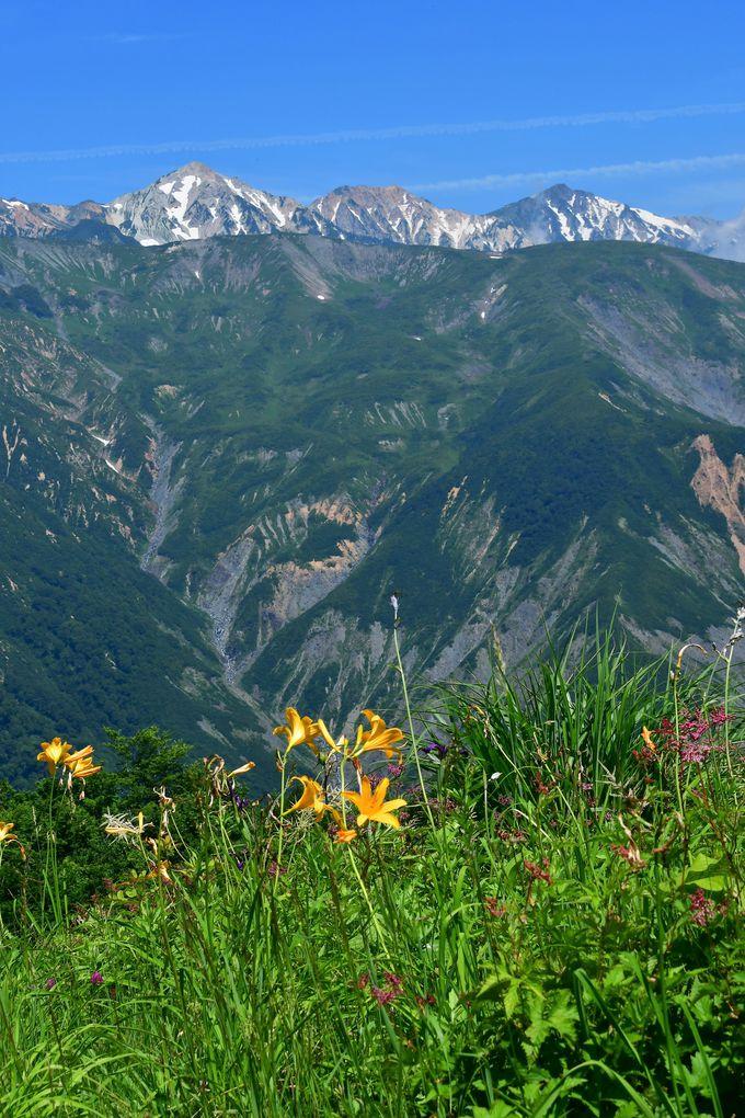 白馬三山と唐松岳