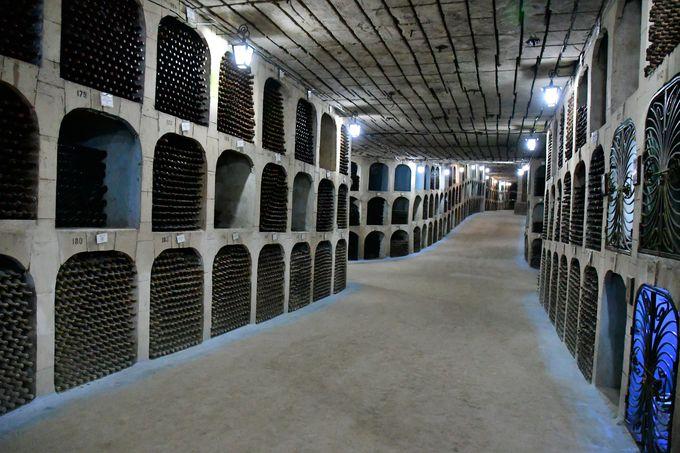 ギネス認定世界最大のワイナリー