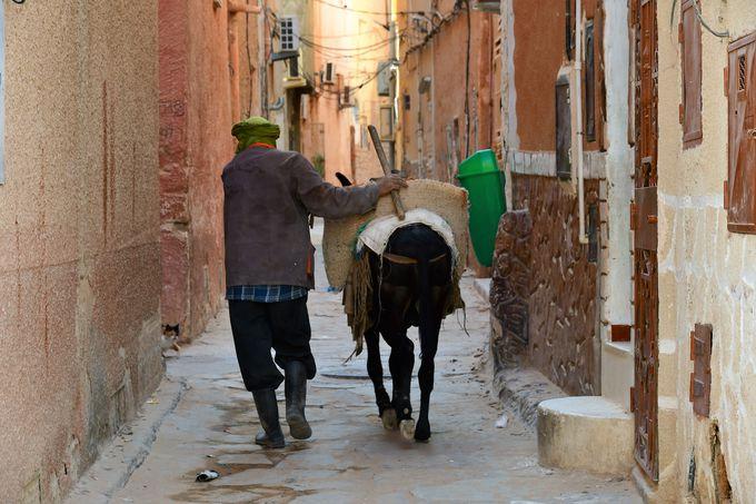 世界にここだけ、魅力いっぱいのムザブの谷の町々