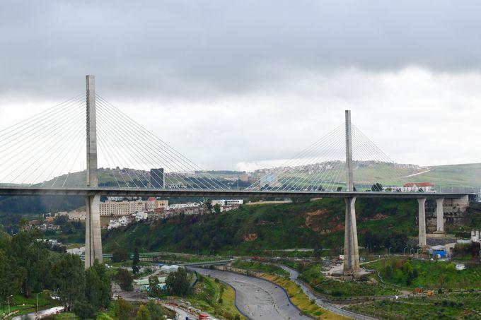 ペレゴ歩道橋とサラ・ベイ橋