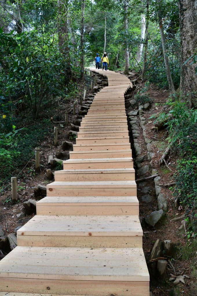 最後は沢登りと長い階段