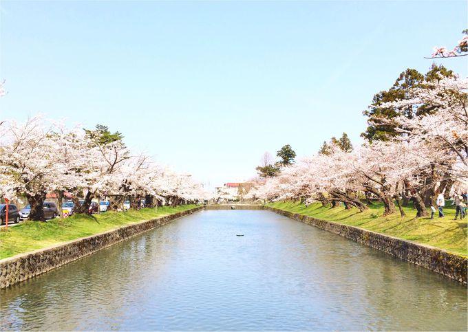 1.鶴岡公園