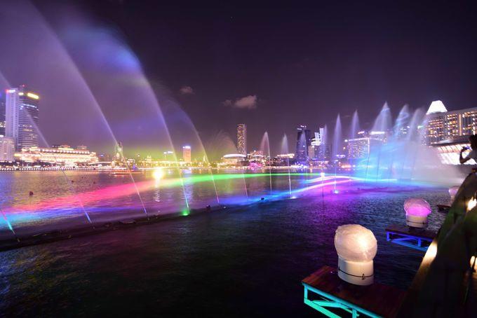 1日目夜:シンガポール名物、2つのナイトショーを見学