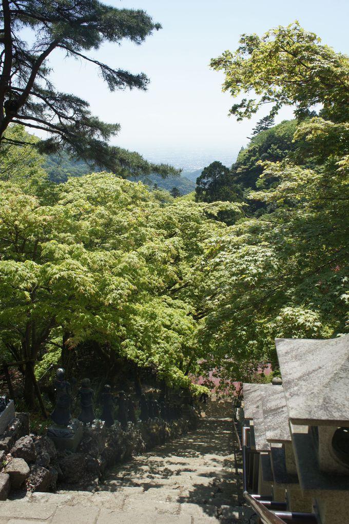 大山ケーブルカー駅から大山寺へ
