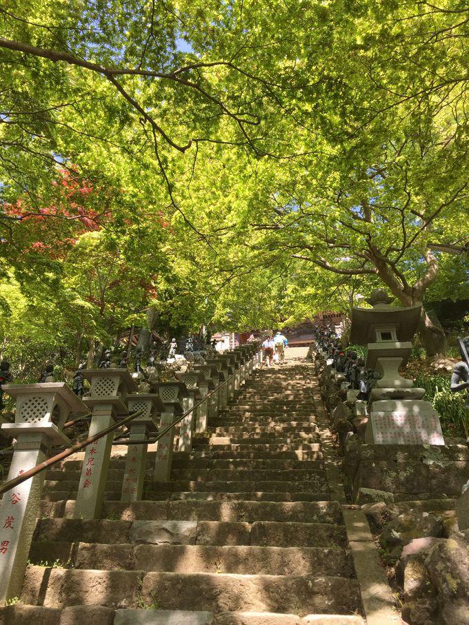 大山の中腹 大山寺