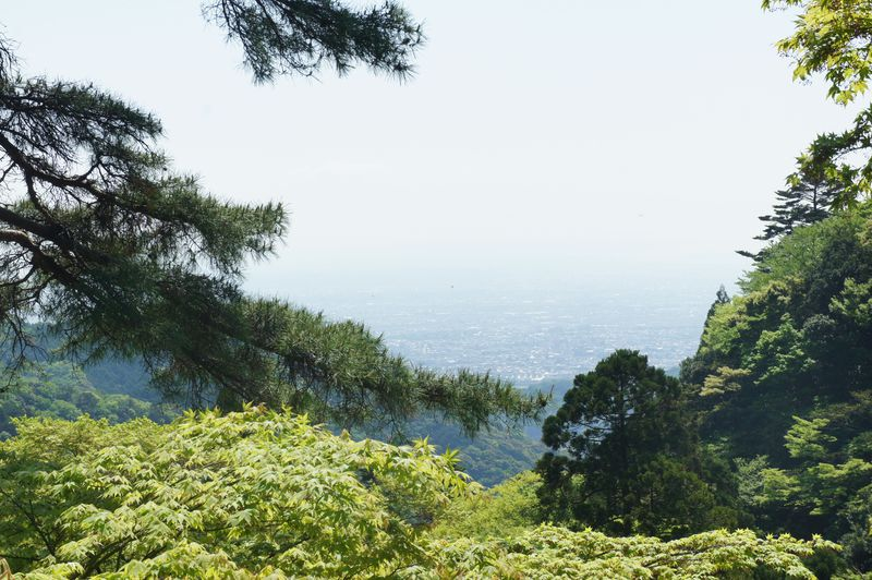 新宿から約90分!絶景もパワースポットも楽しめる丹沢・大山