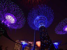 シンガポール「ガーデンズ・バイ・ザ・ベイ」のフォトジェニック撮影スポット