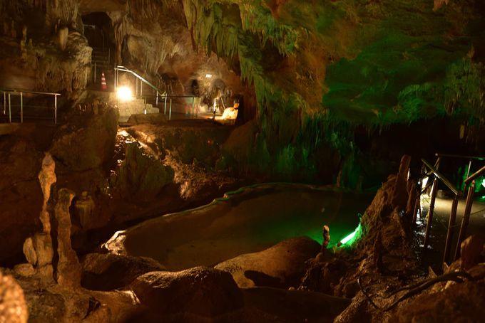 幻想的な地下空間「石垣島鍾乳洞」