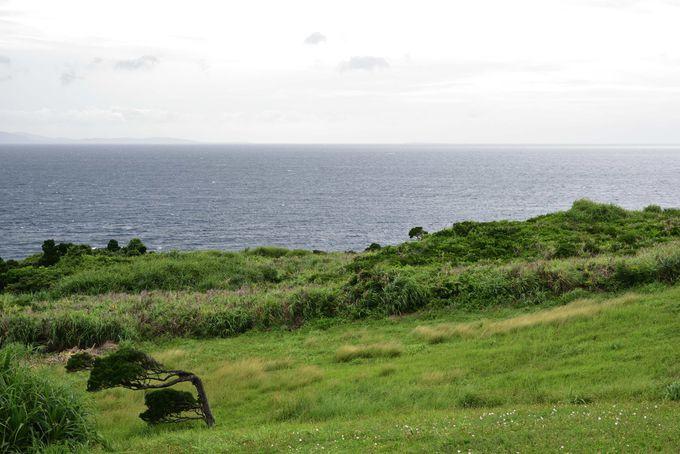 石垣島の荒ぶる一面見せる「御神崎」