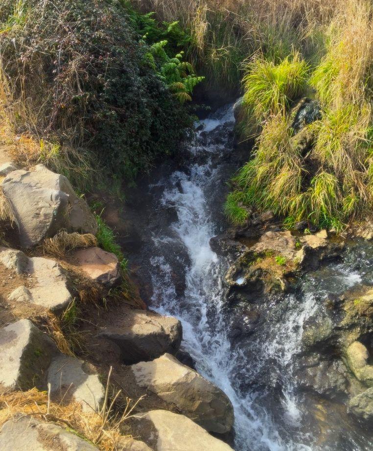 迫力のワイカト川に沿ったトレッキングコース
