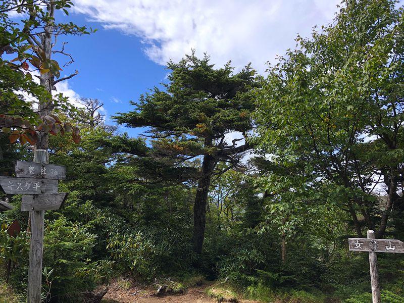 登山初心者におすすめ!登りごたえたっぷりの栃木県・赤薙山
