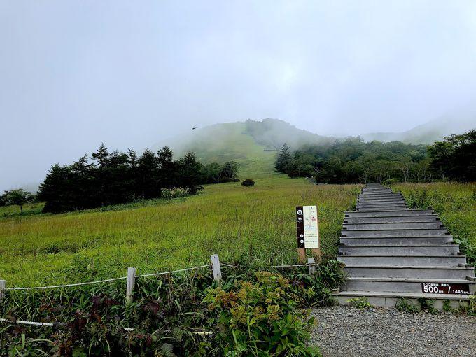 登山口と最初の難関・1445段の天空回廊