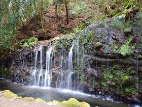 箱根駒ヶ岳周辺、山・湖・滝が楽しめる癒やしの穴場スポット