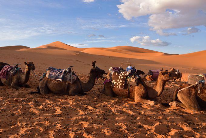 地球の果ての砂漠による絶景「メルズーガ」