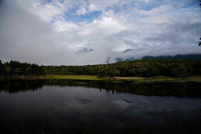 ヒグマに注意!風光明媚な知床五湖の散策路