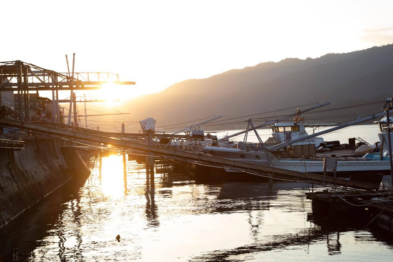 朝7時スタート!宮島口から「かき水揚げ体験」に出発