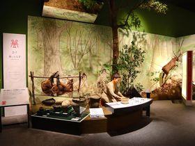 「滋賀県立琵琶湖博物館」がリニューアル!半身半骨のツダンスキーゾウも復元