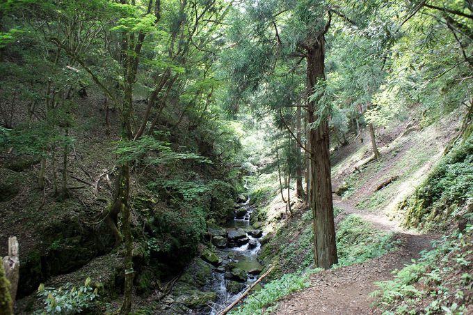 小さな滝が連続する天滝渓谷