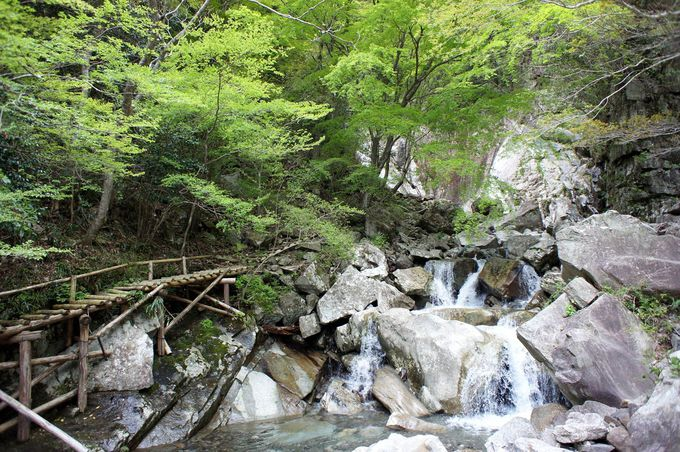 ここがかくれ滝への入口