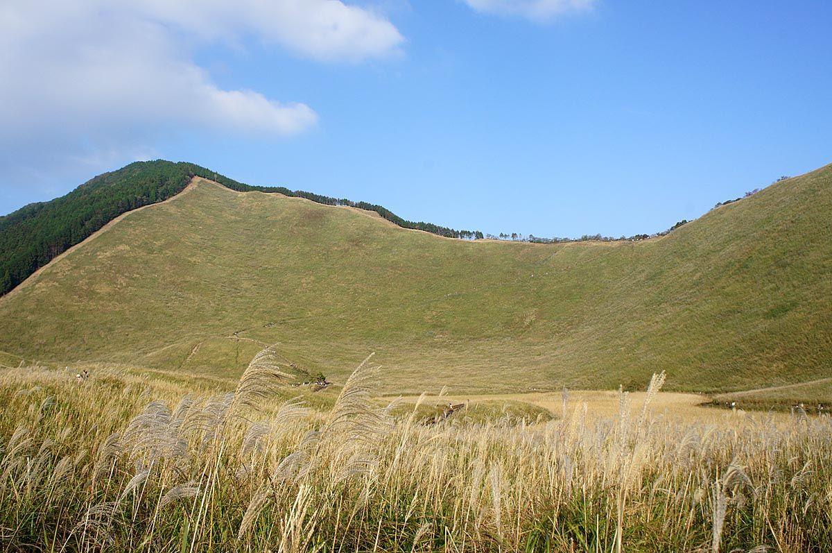 秋には多くの観光客が訪れる曽爾高原