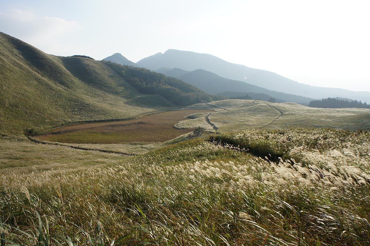 湿原となったひょうたん型のお亀池
