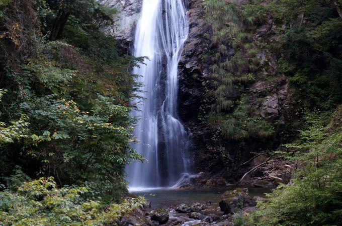美しい滝身