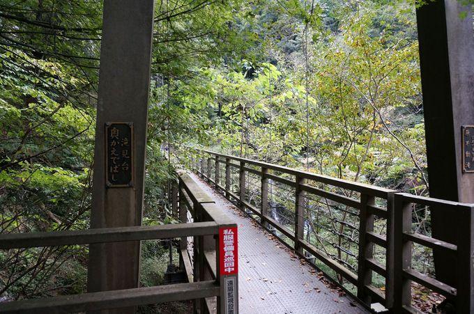 吊橋で川の上を渡る