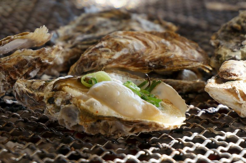 牡蠣食べ放題に行こう!冬の味覚の美味しい食べ方 〜海の駅 しおさい市場(兵庫県赤穂市)