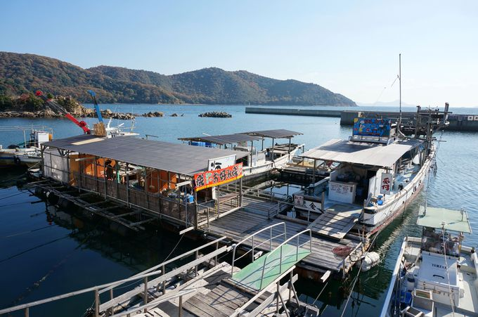 やっぱり牡蠣は港で食べるに限る