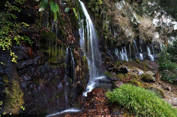 岩壁から直接湧き出してくる玉垂の滝