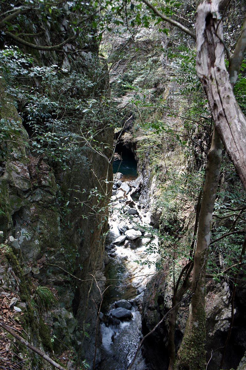 細くて深い谷底「犬飛岩」