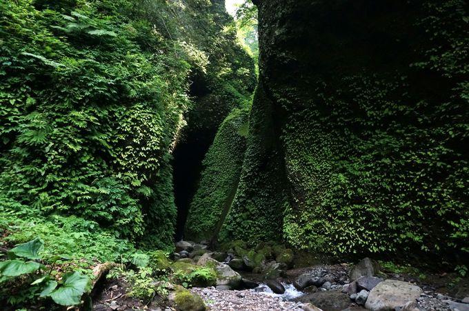 川を進んで洞窟へ