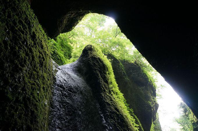 ため息が出るほど神秘的な空間