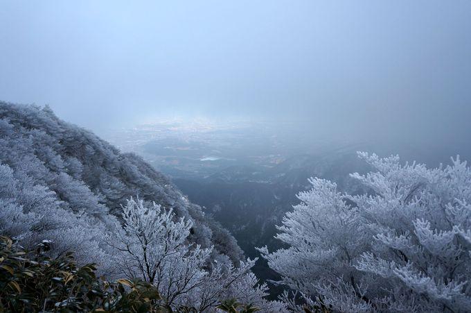 樹氷ができる条件とは