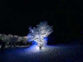 真冬に咲く白い氷の花 〜御在所HYOBAKUライトアップ(三重県菰野町)
