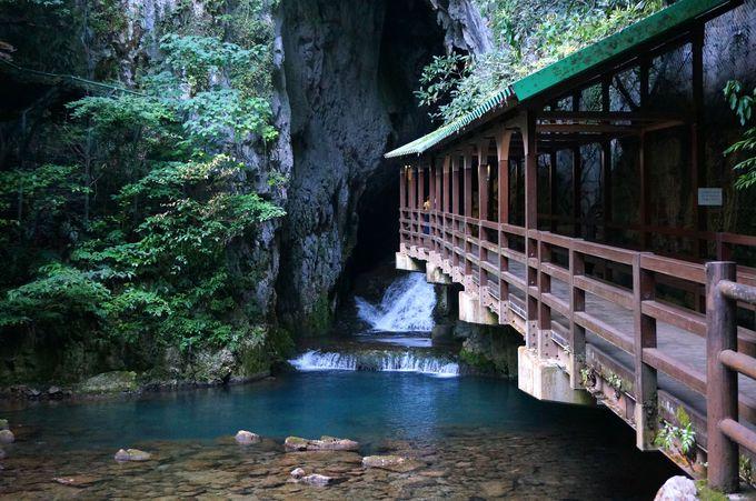 山口の定番観光地と言えば「秋芳洞」