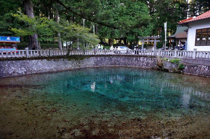 コバルトブルーの湧き水「別府弁天池」