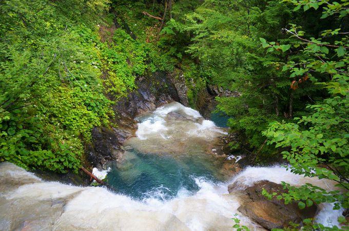 三本滝への道は乗鞍高原の魅力が詰まっている