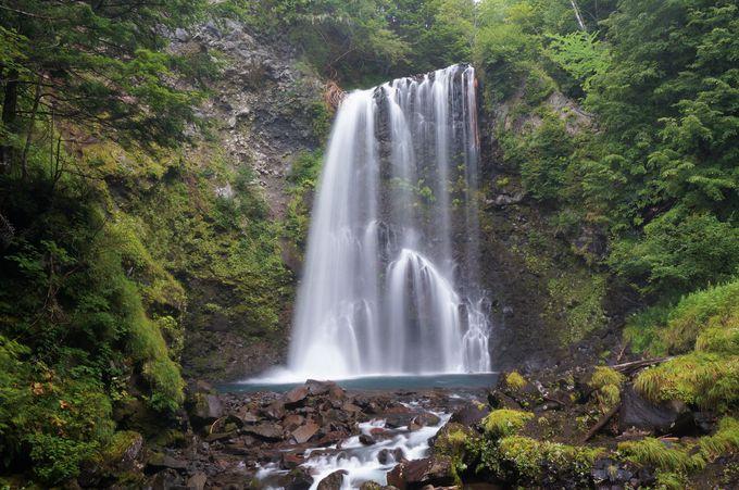体いっぱいにマイナスイオンを浴びる「善五郎の滝」