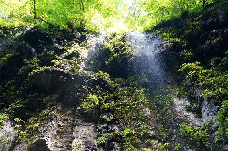 光芒差し込む「雄飛の滝」