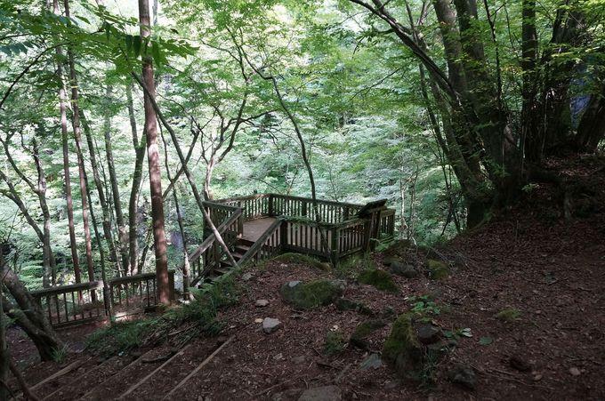 雄飛の滝へは橋を渡らず上流へ