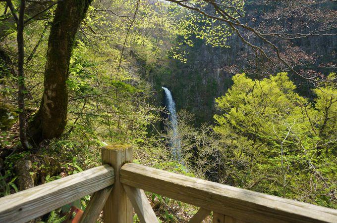 時間と体力があればもう一つの滝へ行ってみよう