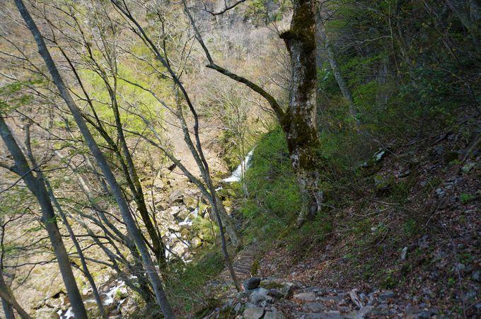 もう一つの名瀑「筥滝」