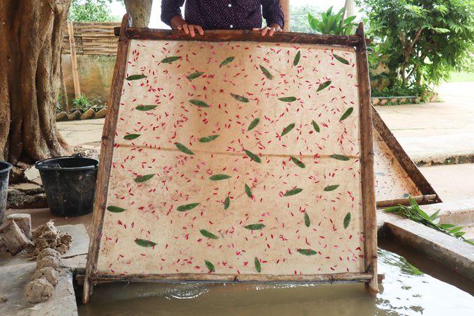 伝統的な紙つくりと職人技が光る傘づくり