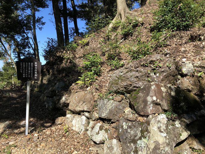 森乱丸(蘭丸)が生まれたのはここ!美濃金山城跡