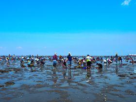 人気沸騰中!潮干狩りとランチで楽しむ千葉・富津海岸の1日
